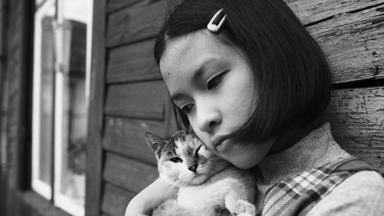 Выставка известных польских фотографов откроется в Киеве