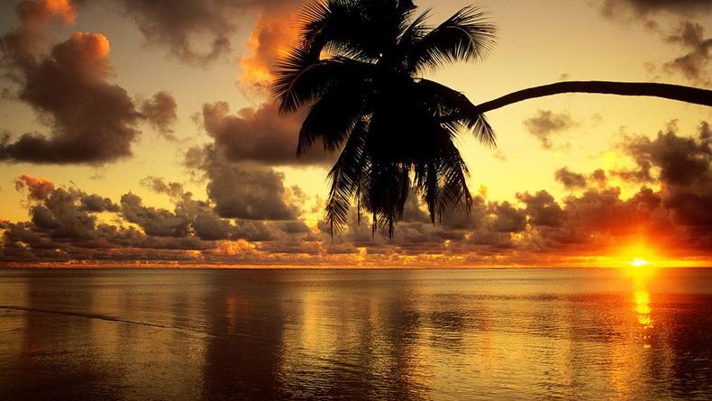 Новый клип о море и солнце от Netsky (ВИДЕО)