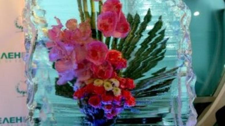 Выставка цветов Снежной Королевы
