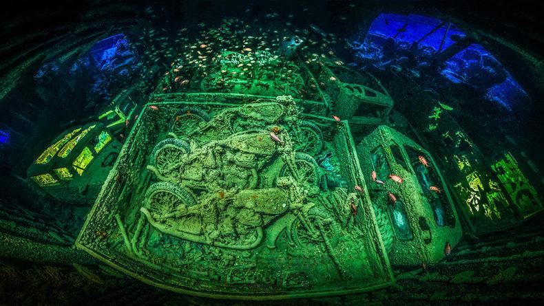Жизнь в море. Представлены лучшие подводные фотографии 2018 года