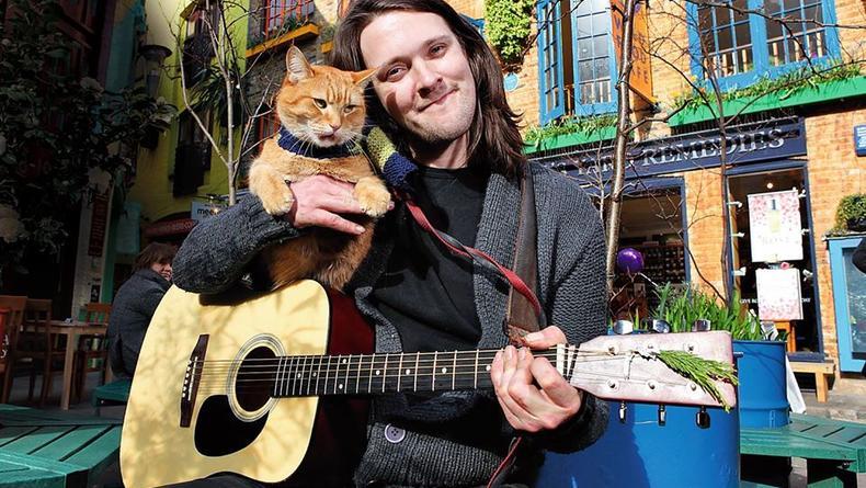 В Британии умер уличный кот Боб, который стал звездой мирового масштаба
