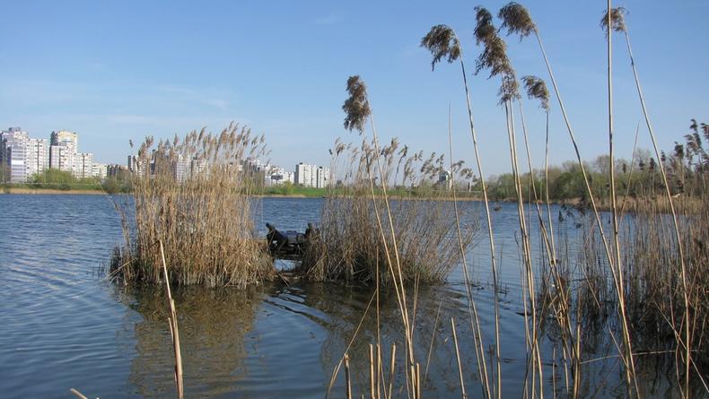 Два оболонских озера оказались опасными для здоровья