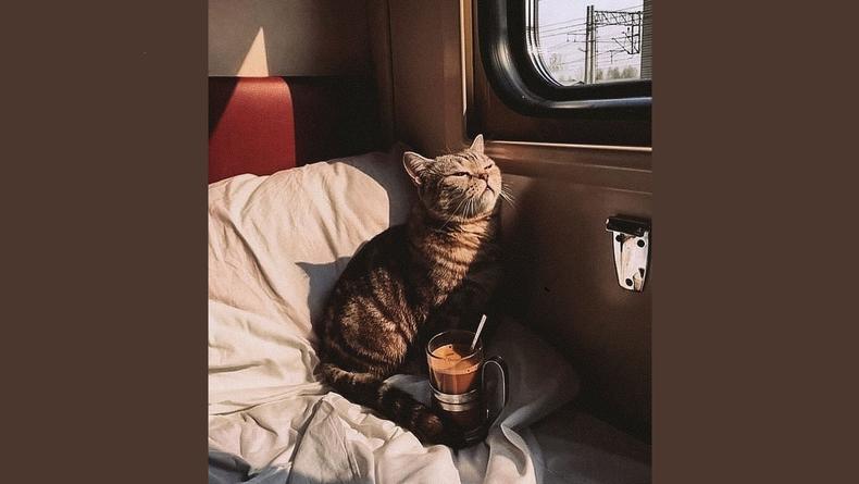 В украинские поезда возвращаются чай и кофе