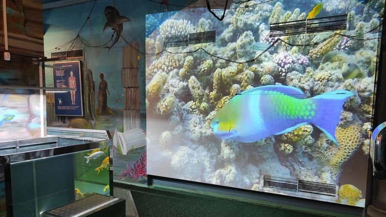 Музей воды в Киеве обзавелся спецэффектами