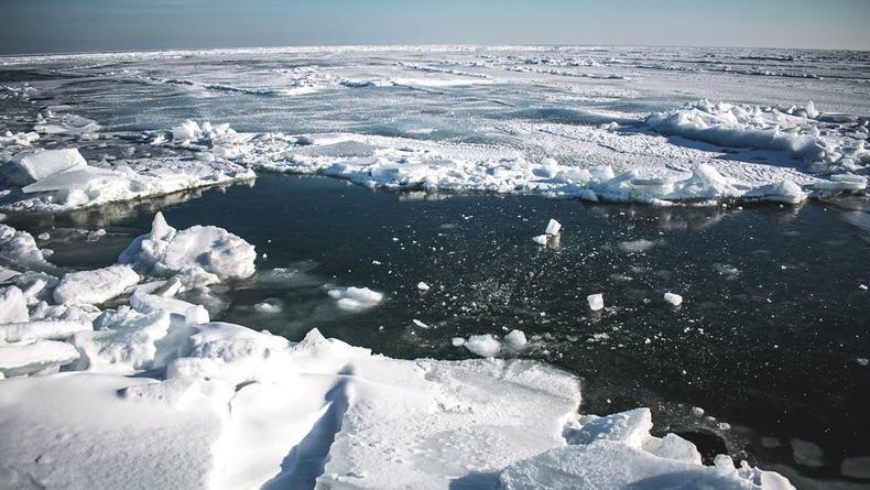 Словно Арктика: Появились впечатляющие фото Бердянской косы
