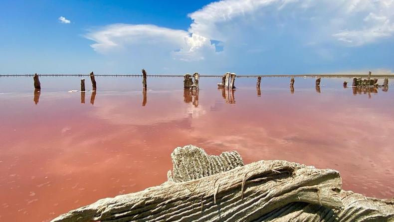 Розовое озеро в Украине: Как добраться, цены, фото