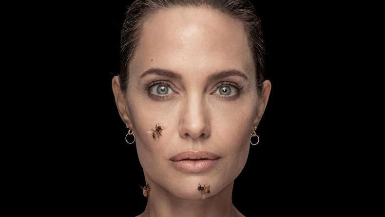 Анжелина Джоли намеренно пошла на близкий контакт с пчелами