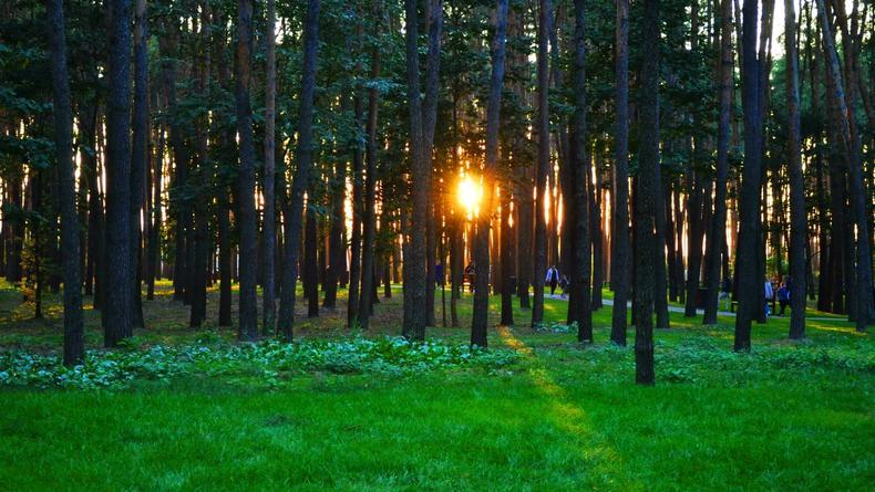 Три парка Киева награждены премией по ландшафтной архитектуре