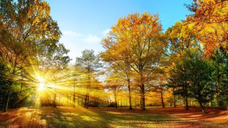 Когда день осеннего равноденствия и как воспользоваться его силой